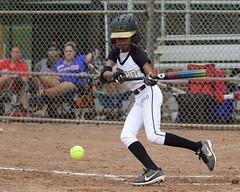 Gainesville Gold Girls 12u Softball 7/20/2019