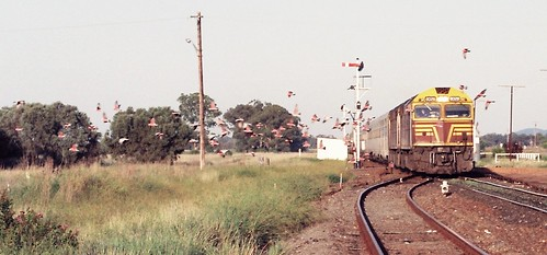 128-8 1992-02-16 8028 and 8021 on WL-2 at Bogan Gate