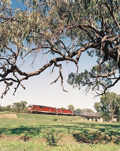 129-9 1992-02-16 8158 and 8178 on WL-2 at Manildra