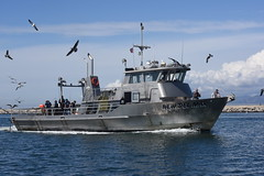 New Del Mar Sportfishing Trawler