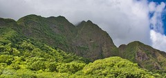 From Iao