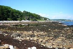 Low tide, Rachel Carson Salt Pool Preserve, New Harbor, Maine