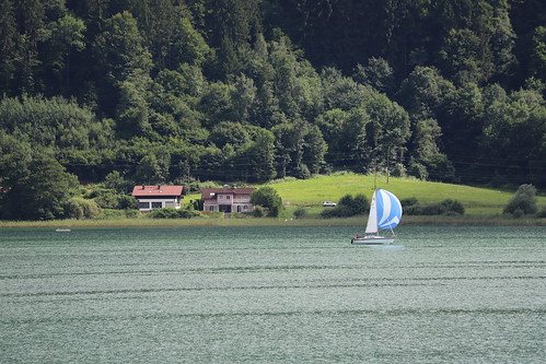 Sailing through a green landscape