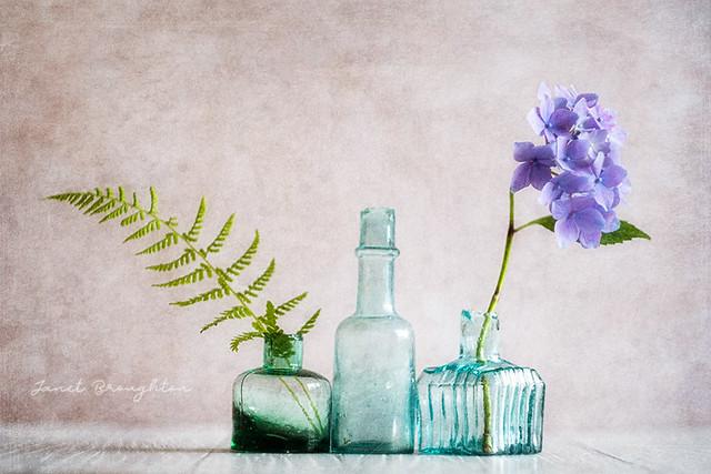 Vintage Bottle Trio