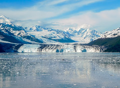 Harvard Glacier, College Fjord; Alaska