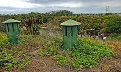 Fort DeSoto- Pinellas County FL (6)