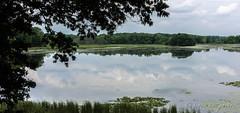 Wildwing Lake ~ Kensington Metro Park, Michigan