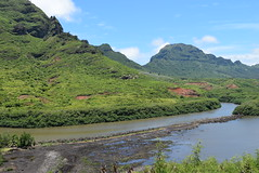 The Ancient Fishpond - Menehune Fishpond Overlook