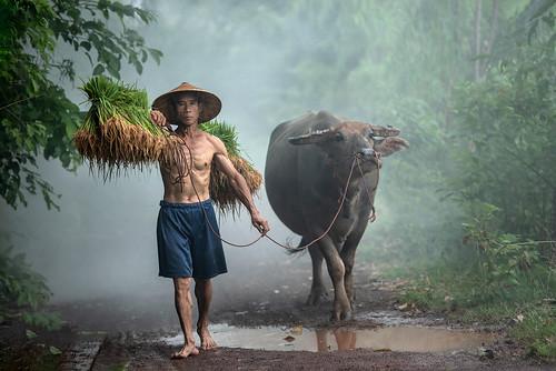 Wonderful Vietnam