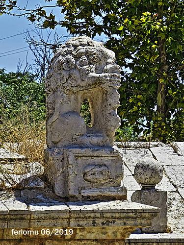 Ocaña (Toledo) 20190622 12 león