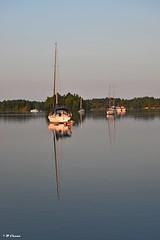 1000 Islands - sunrise reflection