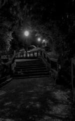 escalier Arcachon N&B