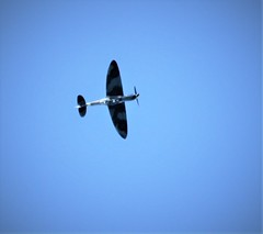 Spitfire over Fishbourne Harbour