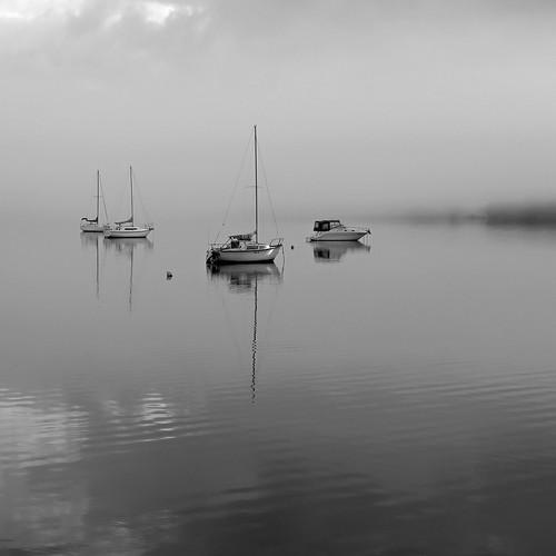 Lake at Eleebana