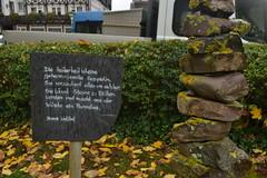 Heiterkeit-Schild am Ufer der Mosel in Ernst (135FJAKA_2411)