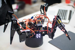 Spider-like robot with visible wires