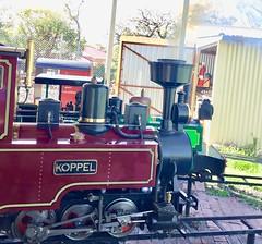 Adelaide. Glen Osmond  Mining company.train. Steam engine. Koppel.