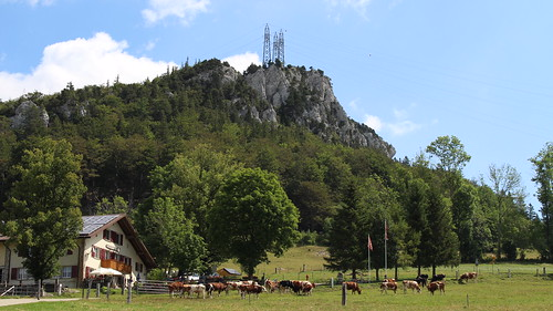 Almwirtschaft Vorderer Schmidenmatt am Fuße des Rüttelhorn (1193 m.ü.M.)