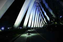 #Light Parade 2_Marina Bay Night Image. Lumix DMC FZ1000. P1060479