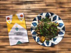 The Beach Project Sandy Menu next to a veggie bowl, with quinoa, wild greens, broccoli, green peas, walnuts, raisins, corn & parian bread on a wooden table