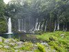 Photo:Shiraito Falls (白糸の滝) By たいぷらいた~