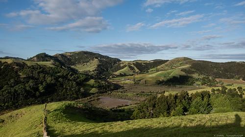 Eco-village - Waiheke Island