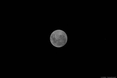 Full Moon - Eco-village - Waiheke Island
