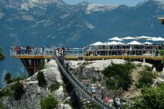 The Sky Pilot Suspension Bridge