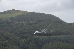 Steam in the landscape: Vale of Rheidol Railway, near Devils Bridge, Ceredigion, Wales