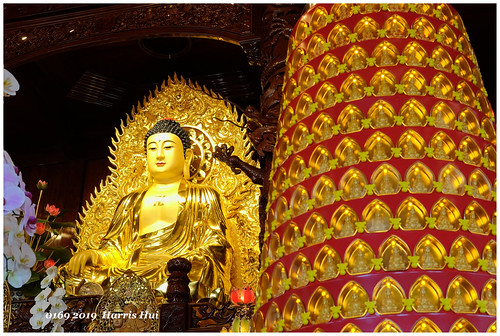 Are The Little Buddha Led By The Big Buddha - Lingyen Mountain Temple XT8292e