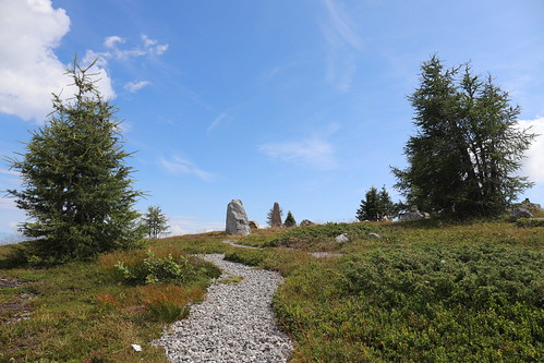 Stones on the path