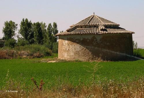 En Villarramiel. Palencia.