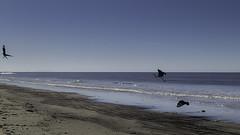Playa Carraco | 190811-2708-jikatu