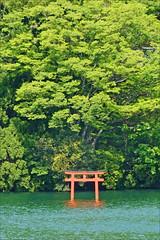 Le lac Ashi (Hakone, Japon)