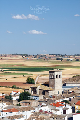 Una típica estampa manchega / A typical picture of La Mancha