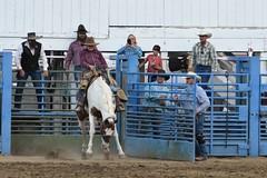 Baker County Tourism – www.travelbakercounty.com 56292