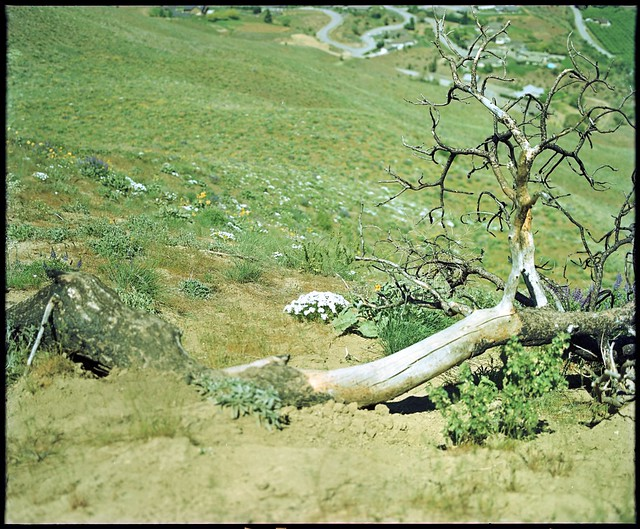 Photo:Horse Lake Reserve, Washington By Conspiracy.of.Cartographers