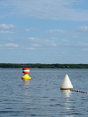 Wolziger See 08/2019