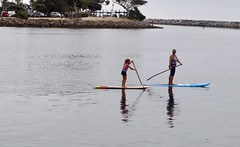 Learning SUP