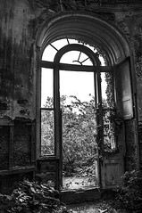 Lets Take A Look Through The Arch Window