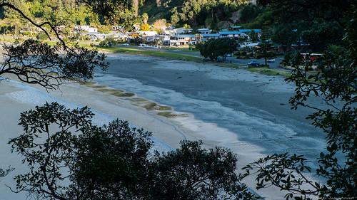 Kohi Point Loop Track - Whakatane