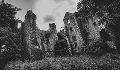 Auld Dalquharan Castle