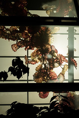 Chihuly Garden and Glass en Seattle (Washington - EEUU)