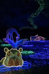 Iluminación de navidad del zoo de Houston (Texas - EEUU)