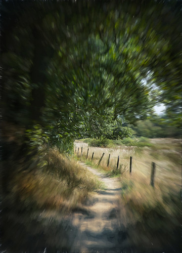Paths Are Paths - Right Nor Wrong