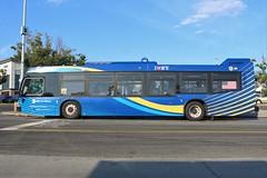MTA 2019 Novabus LFS 8591