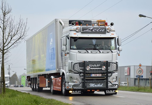 B-Lein Transport >Willaert< Daf Xf 106