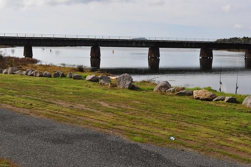 Wairoa River Rail Bridge