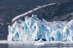 Image by spwasilla (spwasilla) and image name Columbia Glacier photo
