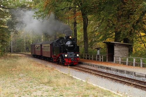 2018-10-21; 0011. HSB 99 6001 met trein 8963. Sternhaus Haferfeld.